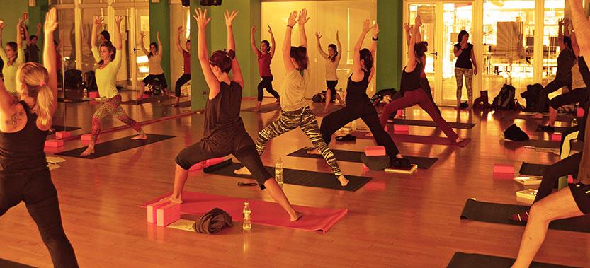 Formación profesor de yoga 200 horas