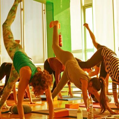 formacion profesor yoga 200h verano